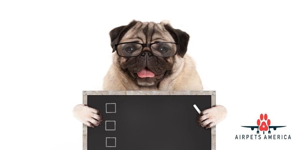 pre-flight checklist dog airpets america